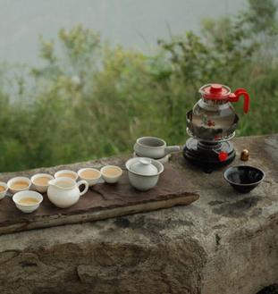普洱茶与生活