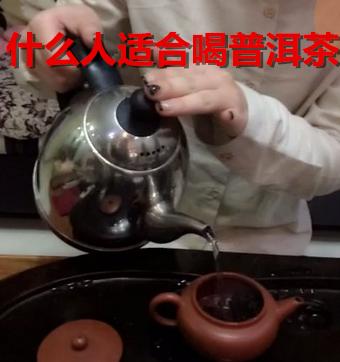 什么人群不适宜饮用普洱茶?