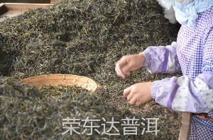 云南普洱茶的生产工艺!哪一种才是比较好的。